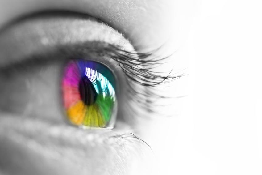 Oeil de profil, iris multicolore