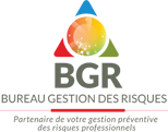LogoBGRFooter